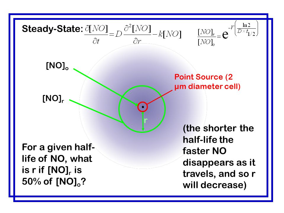 Steady-State: [NO]o. [NO]r. r. For a given half-life of NO, what is r if [NO]r is 50% of [NO]o .